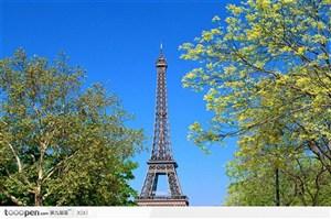铁塔 树木 蓝天