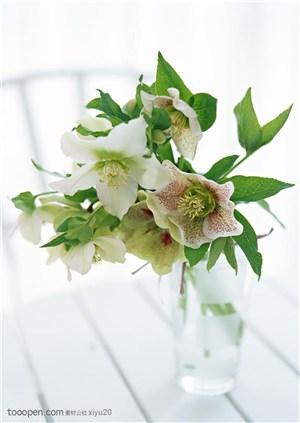 花卉物语-木地板上的一束百合花