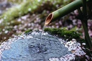 竹林风景- 用竹竿引下来的山泉