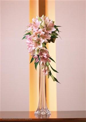 新婚物语-杯中的粉色百合花